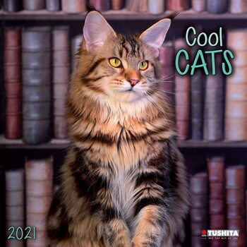 Ημερολόγιο 2021 Cool Cats