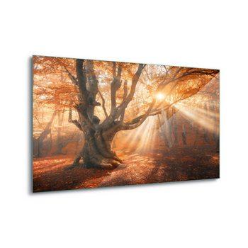 Cuadro en vidrio Autumn Magic
