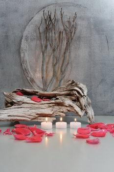 Cuadro en vidrio Zen - Fountain