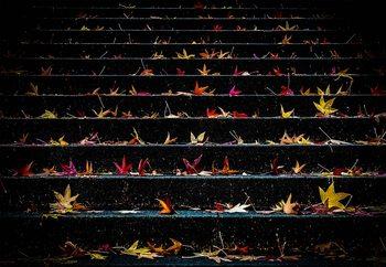 Ταπετσαρία τοιχογραφία  December Steps In The Dark Side