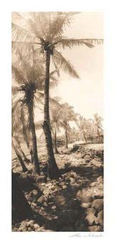 Equatorial Breeze I - dekorációs tapéták