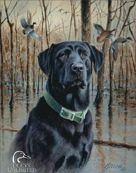 Metalen bord DU - great retrievers