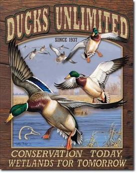 DUCK UNLIMITED - conservation today Metalplanche