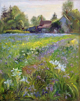 Dwarf Irises and Cottage, 1993 Festmény reprodukció