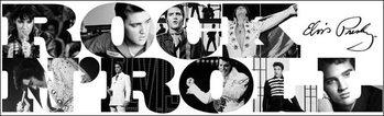 Elvis Presley - Rock n' Roll Festmény reprodukció