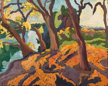 Konsttryck Ageing trees, 2009