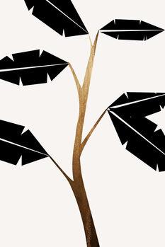 Illustration Banana Tree
