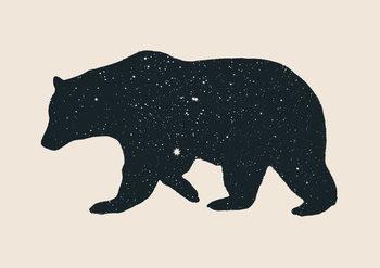 Konsttryck Bear