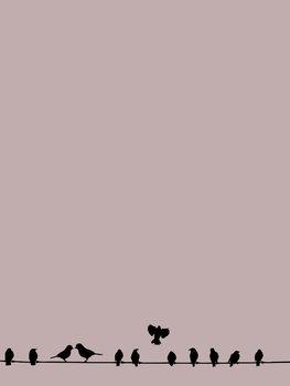 Illustration Birdwire