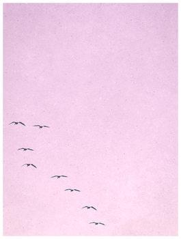Illustration borderpinkbirds