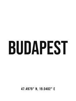Illustration Budapest simple coordinates