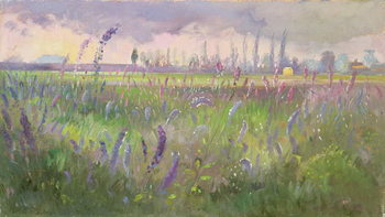 Konsttryck Delphiniums, Storm passing, 1991