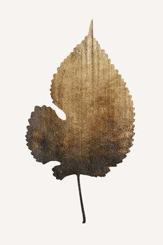 Illustration Golden Leaf