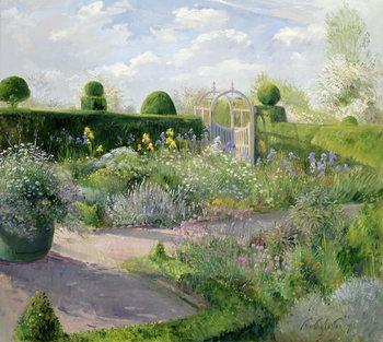 Konsttryck Irises in the Herb Garden, 1995