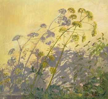 Konsttryck Lovage, Clematis and Shadows, 1999