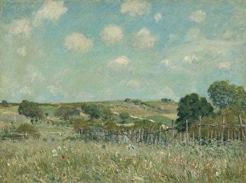 Konsttryck Meadow, 1875