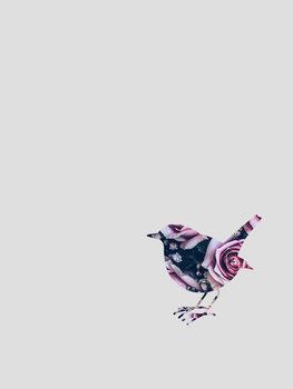 Illustration robin flower