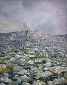 Konsttryck The 42nd Peak, 2012,