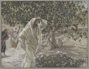 Konsttryck The Accursed Fig Tree, illustration from 'The Life of Our Lord Jesus Christ', 1886-94