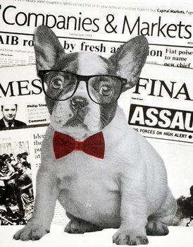 Konsttryck Wall street dog, 2015,