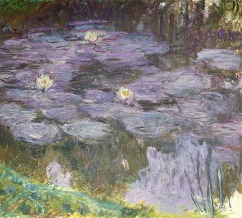 Konsttryck Waterlilies, 1917