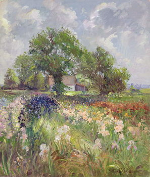 Konsttryck White Barn and Iris Field, 1992