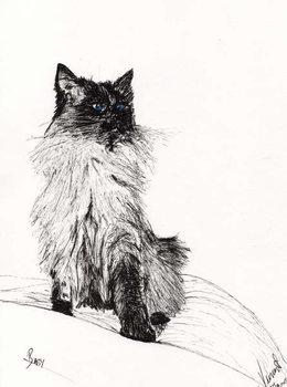 Konsttryck  Baby, 2008,