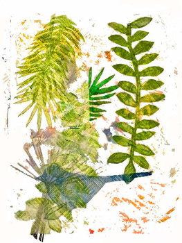 Konsttryck Botanical jungle