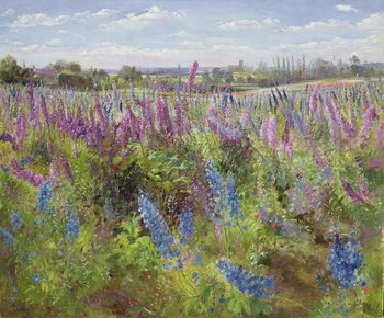 Konsttryck  Delphiniums and Poppies, 1991