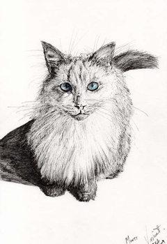 Konsttryck Monty, 2009,