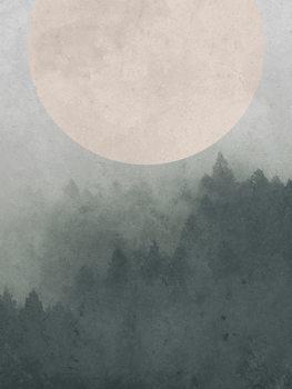 Illustration Moonbird