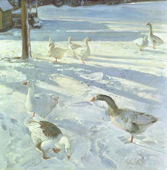 Konsttryck  Snowfeeders, 1999