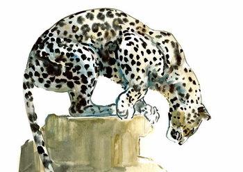 Konsttryck Spine (Arabian Leopard), 2015,