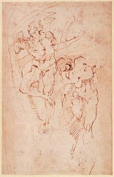 Konsttryck Studies of Male Nudes