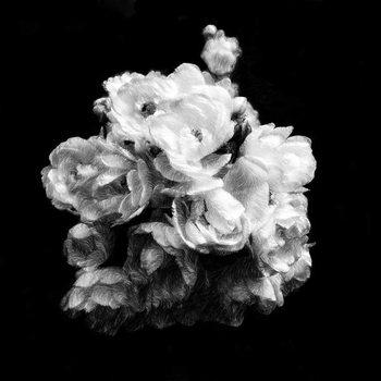 Konsttryck Summer English Roses, 2019,
