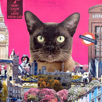 Konsttryck Urban cat, 2015,