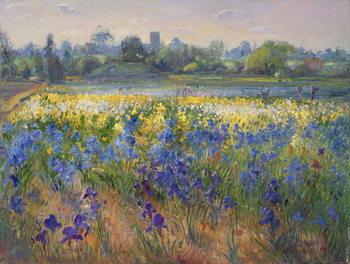 Blue Haze at Burgate, 1993 Festmény reprodukció