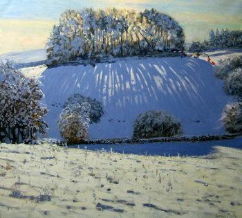 Field of shadows, near Youlgrave, Derbyshire Festmény reprodukció