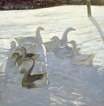 Geese Against the Light Festmény reprodukció