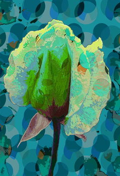Tea Rose 2 Festmény reprodukció