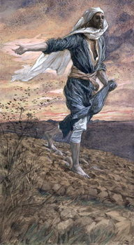 The Sower, illustration for 'The Life of Christ', c.1886-94 Festmény reprodukció