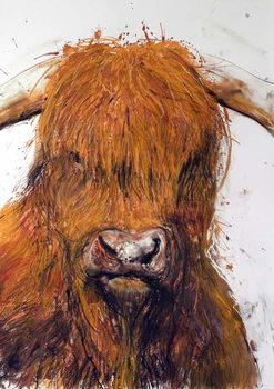 Angus, 2013, Festmény reprodukció