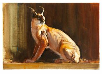 Arabian Caracal, 2010 Festmény reprodukció