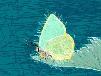 Beautiful Butterfly, 2019, Festmény reprodukció