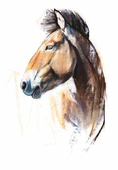 Desert Spirit (Przewalski), 2013, Festmény reprodukció