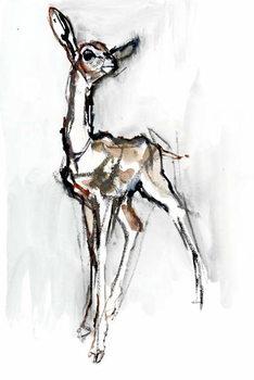 Gerenuk fawn, Sarara, 2018, Festmény reprodukció