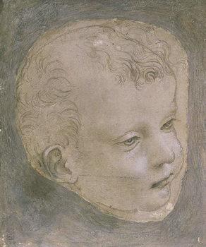 Head of a Child Festmény reprodukció