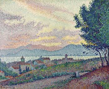 St. Tropez, Pinewood, 1896 Festmény reprodukció