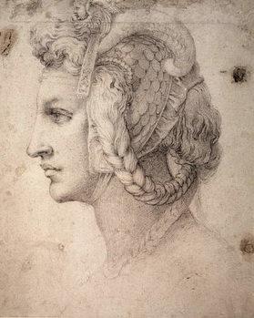 Study of Head Festmény reprodukció