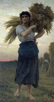 The Gleaner, 1877 Festmény reprodukció